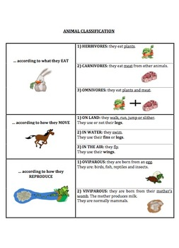 Animal Classification