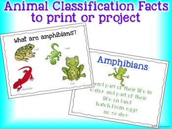 The Ultimate Animal Classification Science Packet