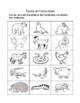 Food Chain Activities, Center and Quiz