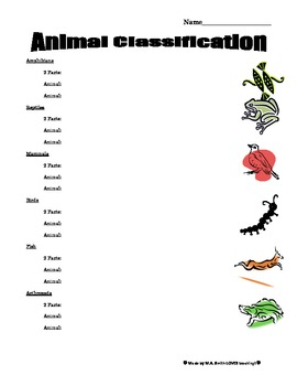 Animal Classification Asessment