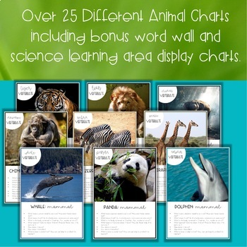 Animal Classification Charts | Biological Science