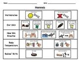 Animal Classification Checklist