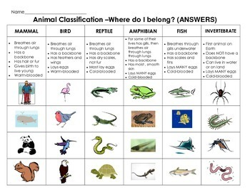 Animal Classification Cut & Paste: Sort animals by characteristics