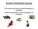 Animal Classification File Folder Games