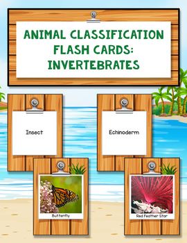 Animal Classification Flash Cards: Invertebrates
