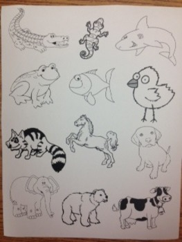 Animal Classification Flipbook!