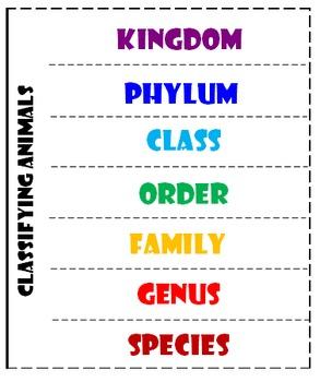 Animal Classification Flipbook