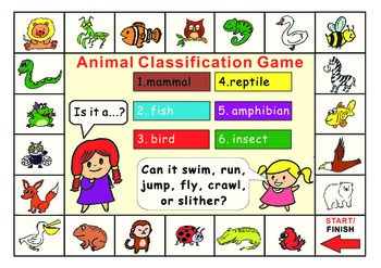 Animal Classification Game board