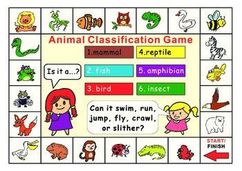 Animal Classification Game board