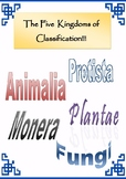 Animal Classification -  Handouts and Activities