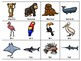 Animal Classification: Heads Up Game