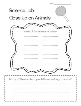 Animal Classification Introduction