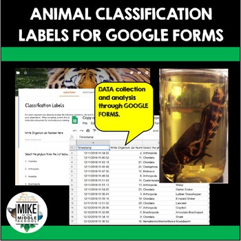 Animal Classification Labels using Google Forms