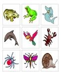 Animal Classification Logic Line Up Cards
