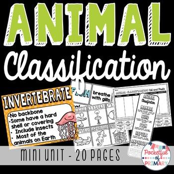 Animal Classification - MINI UNIT