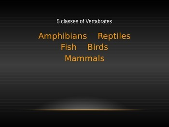 Animal Classification PPT (Science)