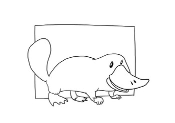 Animal Classification: Platypus (Listening with a FREE Audio + Colouring Page)