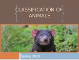 Animal Classification PowerPoint