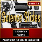 Animal Classification Presentation Part 06 - Segmented Worms