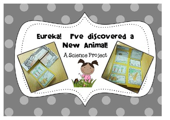 Animal Classification Project