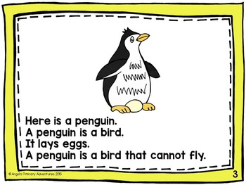 Animal Classification Reader:  Birds