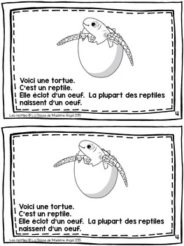 Animal Classification Reader in French - Les reptiles