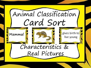 Animal Classification Sort Lesson: Characteristics, Real P