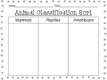 Animal Classification Sort {Mammals, Reptiles, Amphibians, Birds, Fish, Insects}