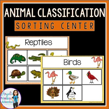 Animal Classification Sorting Center