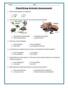 Animal Classification Study Guide and Assessment