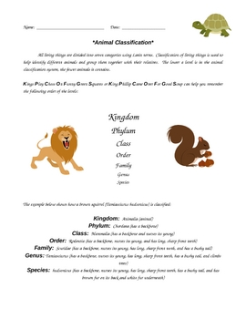 Animal Classification System