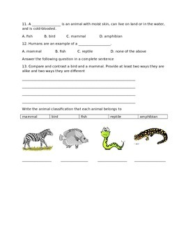 Animal Classification Test- Lower Elementary