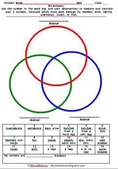 Animal Classification Triple Venn Diagram