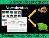 Animal Classification - Vertebrate Dichotomous Key Activity