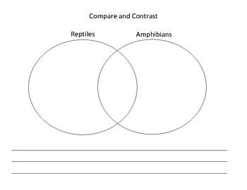 Animal Classification Worksheet Bundle