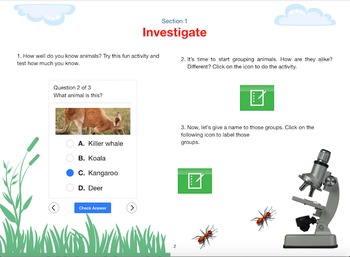 Animal Classification - an interactive lesson with the iPad