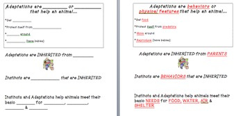 Animal Classification and Adaptation Foldable Notebook Pages