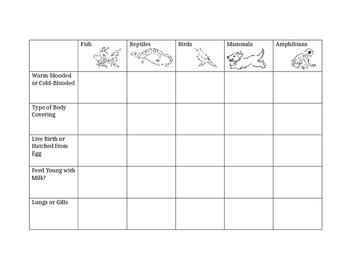 worksheet. Vertebrates And Invertebrates Worksheets. Grass Fedjp ...