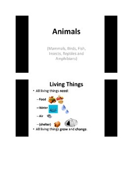 Animal Classification/Groups PowerPoint Presentation - Primary Grades