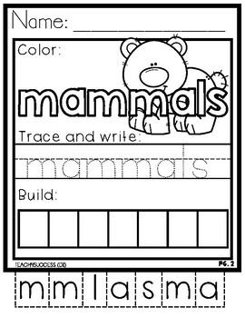 Animal Classifications Bundle!