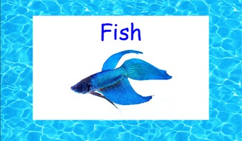 Animal Classifications - FISH, Smartboard Lesson
