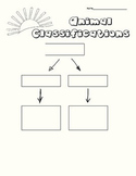 Animal Classifications Graphic Organizer
