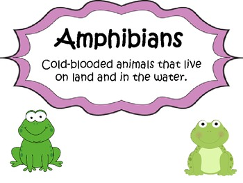 Animal Classifications Posters