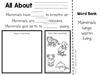Animal Classifications and Animal Habitat Unit Notebook