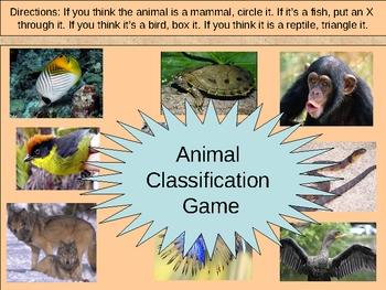 Animal Classifications -vertebrates invertebrates PowerPoint