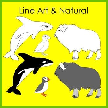 Arctic Animal Clip Art