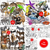 Animal Clip Art Bundle Set 1