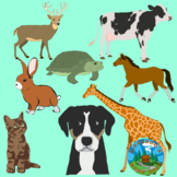 Animal Clip Art Pack - BUNDLE of 8 Animals