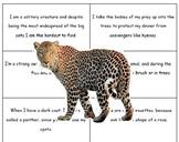 Animal Clue Game