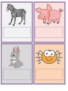 Animal Clues